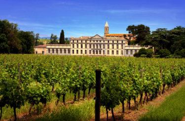 vignes chateau de pennautier