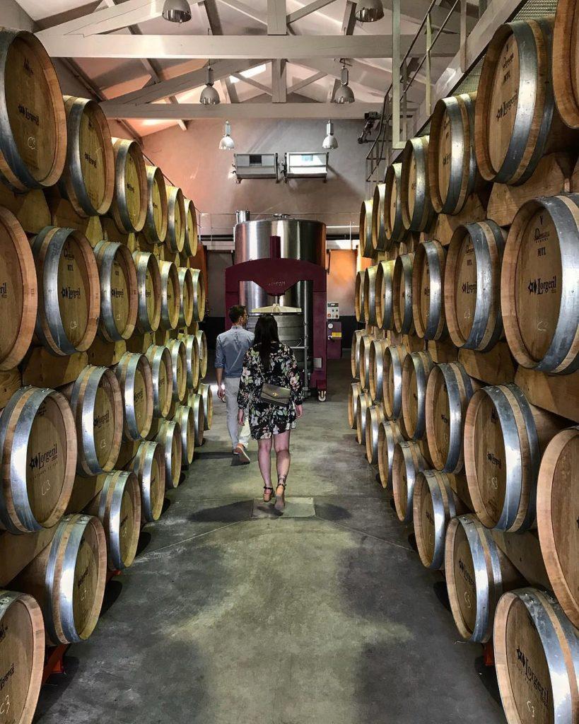 Degustation de vin au chateau de pennautier