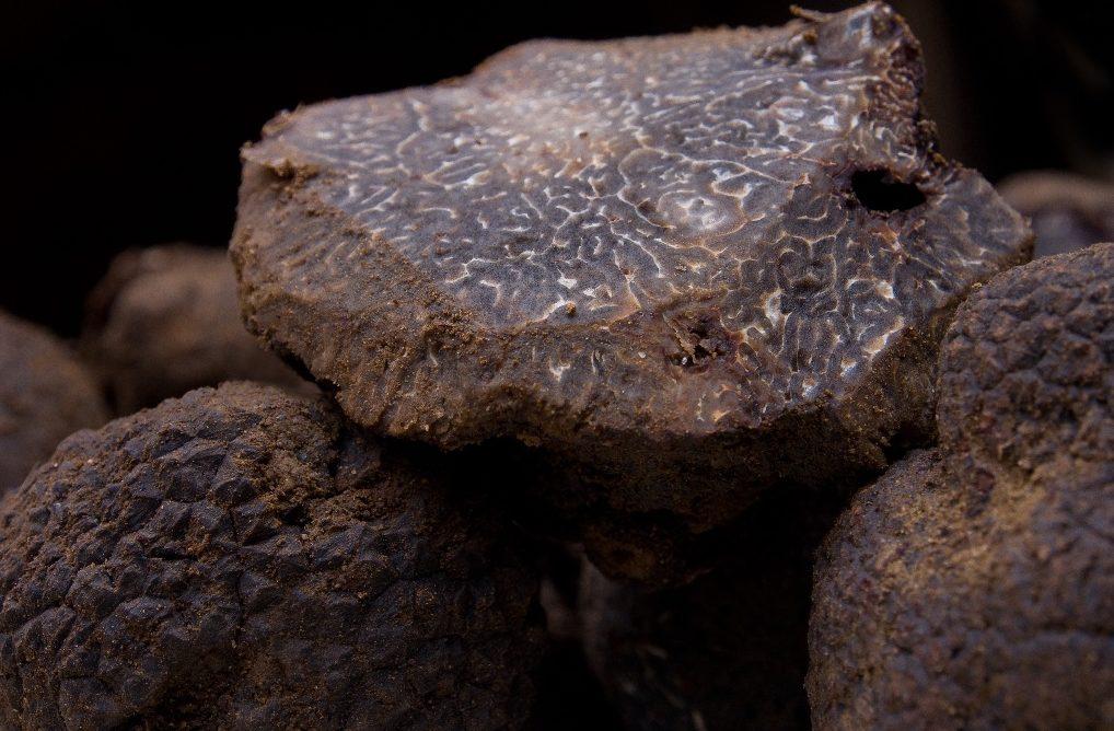 Les marchés aux truffes