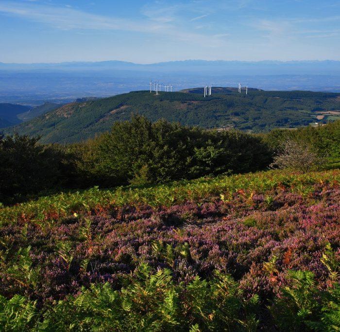 montagne-noire-eoliennes-Pradelles-aude