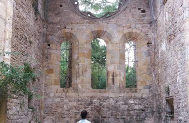 l'abbaye de villelongue saint martin le vieil