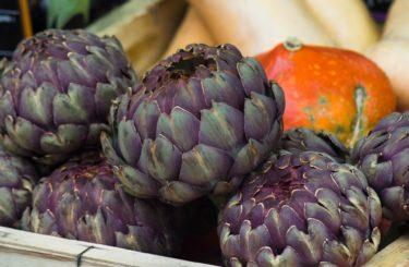 salade-articauts-prosper-montagne-gout-france-carcassonne
