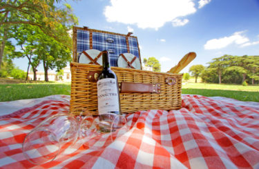 pique nige vignes carcassonne