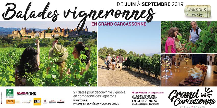 banniere-balades-vigneronnes-grand-carcassonne