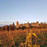 Week-end Médiéval à Carcassonne
