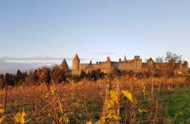 sejour-circuit-vin-carcassonne cite automne