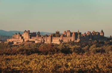 vignes automne carcassonne