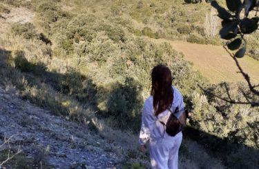 randonnée-aude-grand-carcassonne-moussoulens-cabardes