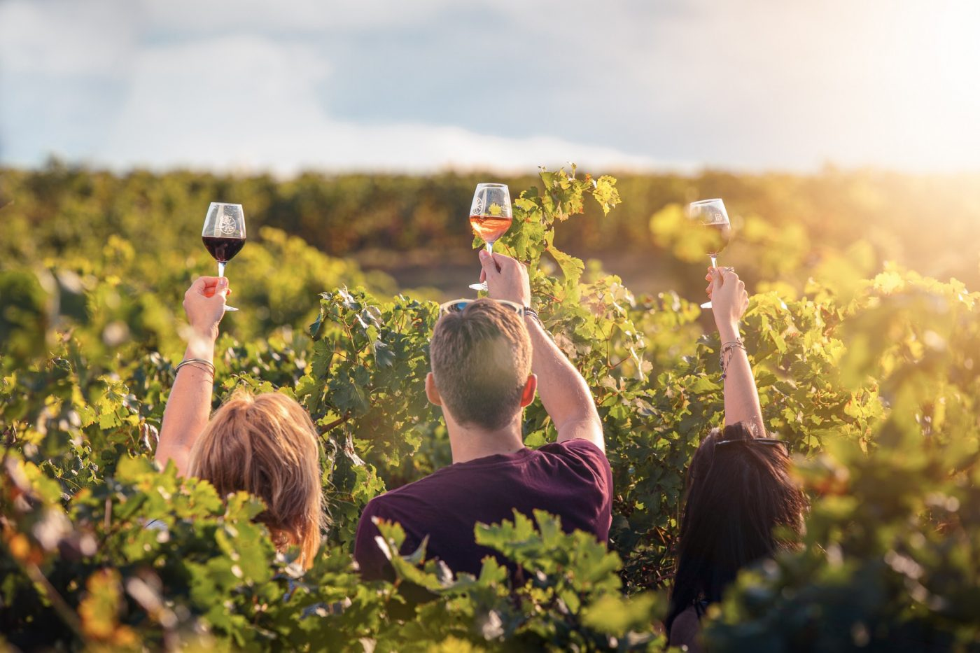 Les balades vigneronnes