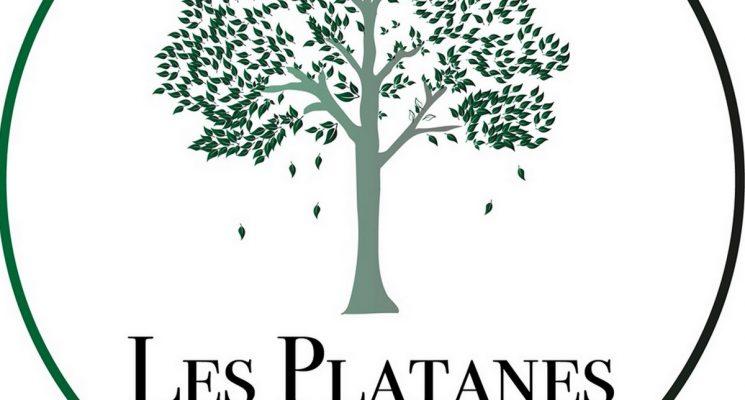 Alzonne-Resto-Les-Platanes
