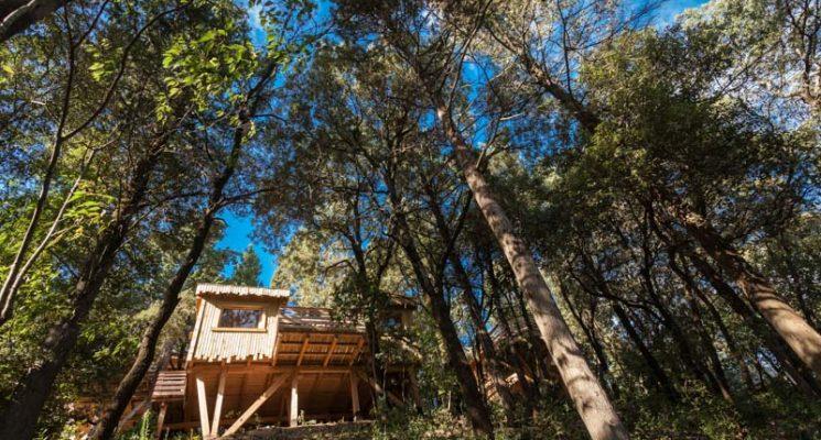 Cabanes dans les bois – Villalier_10