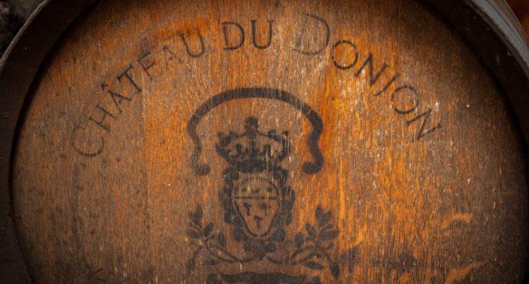 Chateau du donjon-Bagnoles_15