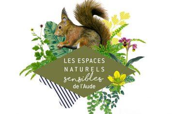 ENS-écureuil