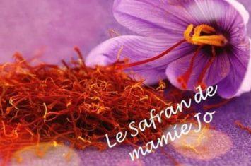 SAFRAN-MAMIE-JO