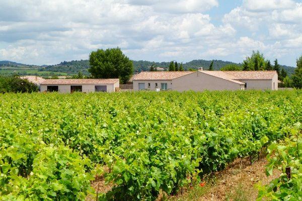 côté chambres vu des vignes