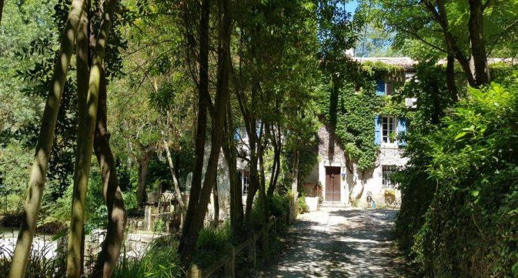 Le Moulin d'Ô – O mon ange_2
